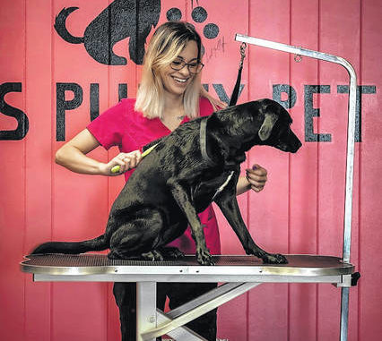 Avec l'aimable autorisation de Photo Martten Purty Pets, LLC organisera son inauguration samedi au 1541 Atkinson St., où la propriétaire Martina Ray et d'autres toiletteurs offriront une variété d'options de jour au spa pour les chiens ainsi qu'une boutique en face de spécialités pour les chiens et leurs personnes.